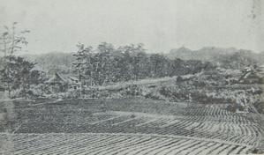 Wakamiya_oji_kamakura_in_1868