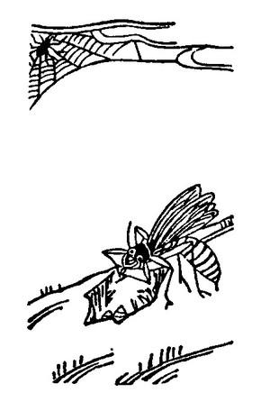 Akabati