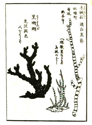 Gyokuseki2