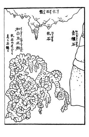 Syounyuuseki