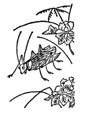 Utuwamusi