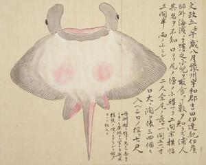 Itomakiei