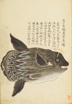Mitoiwakimanbouzu