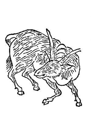 Raigyu