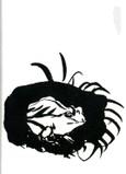 蛙   Les Grenouilles