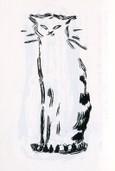 猫   Le Chat