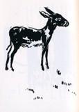 驢馬(ろば)   L'Âne