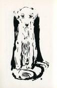 犬   La Chien