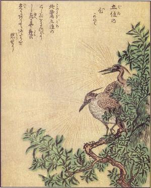 Shunsengoinohikari