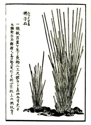 Gyokuseki4
