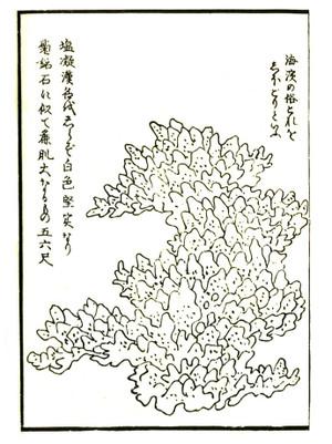 Gyokuseki5