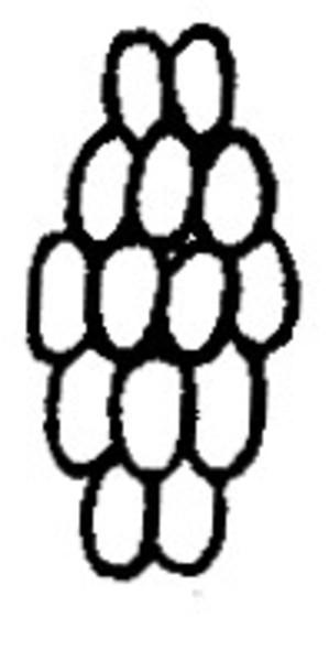Haikujyauroko1