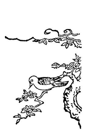Mukudori