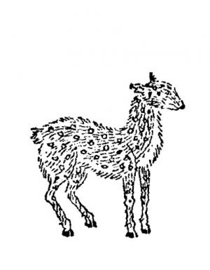 Jyakou