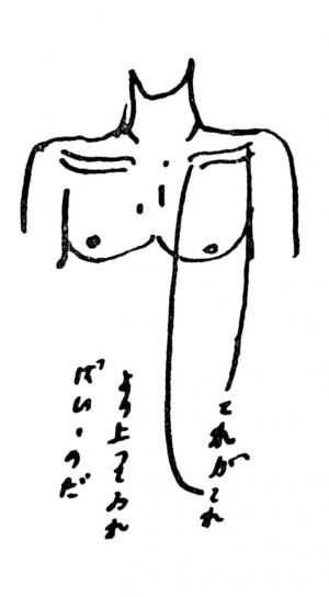 Utakukotu